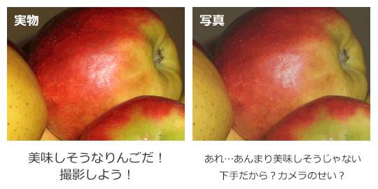 どちらが実物の色、写真の色に見えますか?